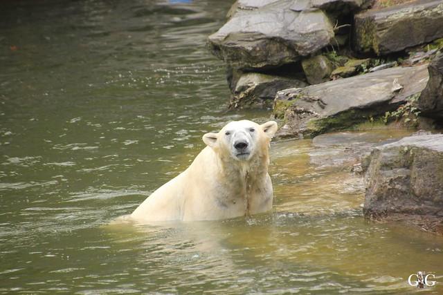 Besuch Tierpark Friedrichsfelde 17.04.20165