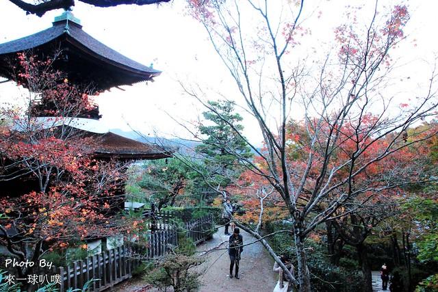 嵐山旅遊景點-常寂光寺40