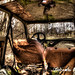 Joyride in the Trabant of Decay