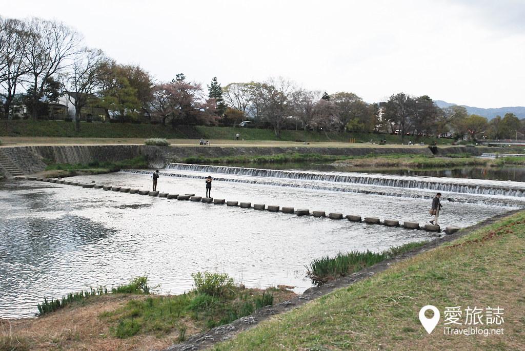 京都赏樱景点 半木之道 14