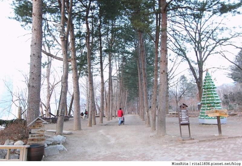 韓國 旅遊 韓國好玩 韓國 南怡島 韓劇景點 冬季戀歌場景 南怡島42