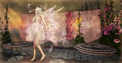 Azul Fairy - RFL