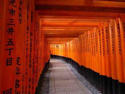inside torii gates