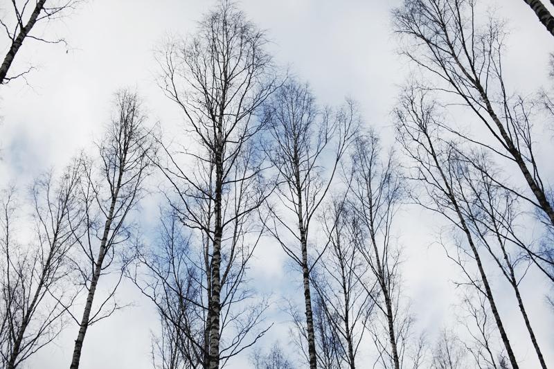 mikkoputtonen_photodiary_finland1_web