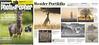 Amateur Photographer Reader Portfolio