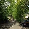 I love this street.