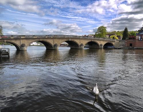 Henley-on-Thames - Bridge