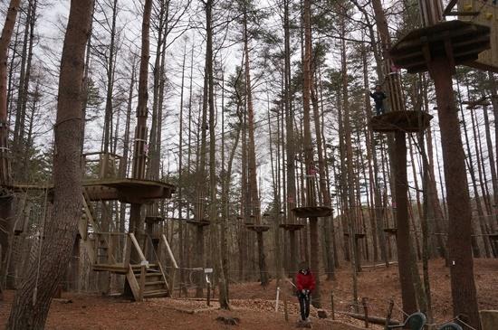 forestadventure14