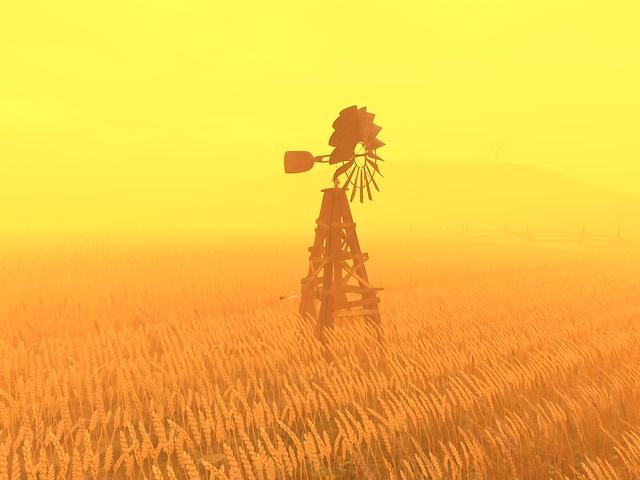Bryn Oh's Lobby Cam - Windmill On A Golden Wheatfield