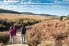 Horton Plains walk