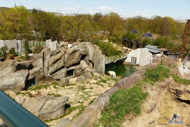 Tierpark Schönbrunn 16.04.2014 53