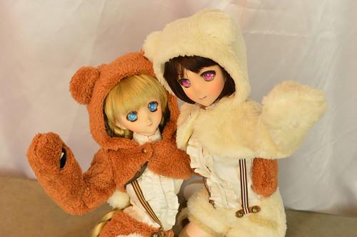 bear015