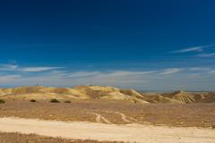 prairie, steppe, erg, horizon, cloud, soil, sand, valley, plain, aeolian landform, hill, natural environment, plateau, desert, dune, landscape, wadi, badlands, grassland, sky,