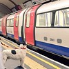Dog waiting for the tube