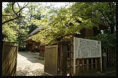 日本富山_砺波チューリップ公園.30