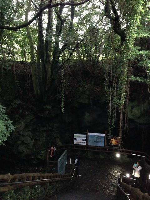 Entrance to Manjanggul Lava Tube