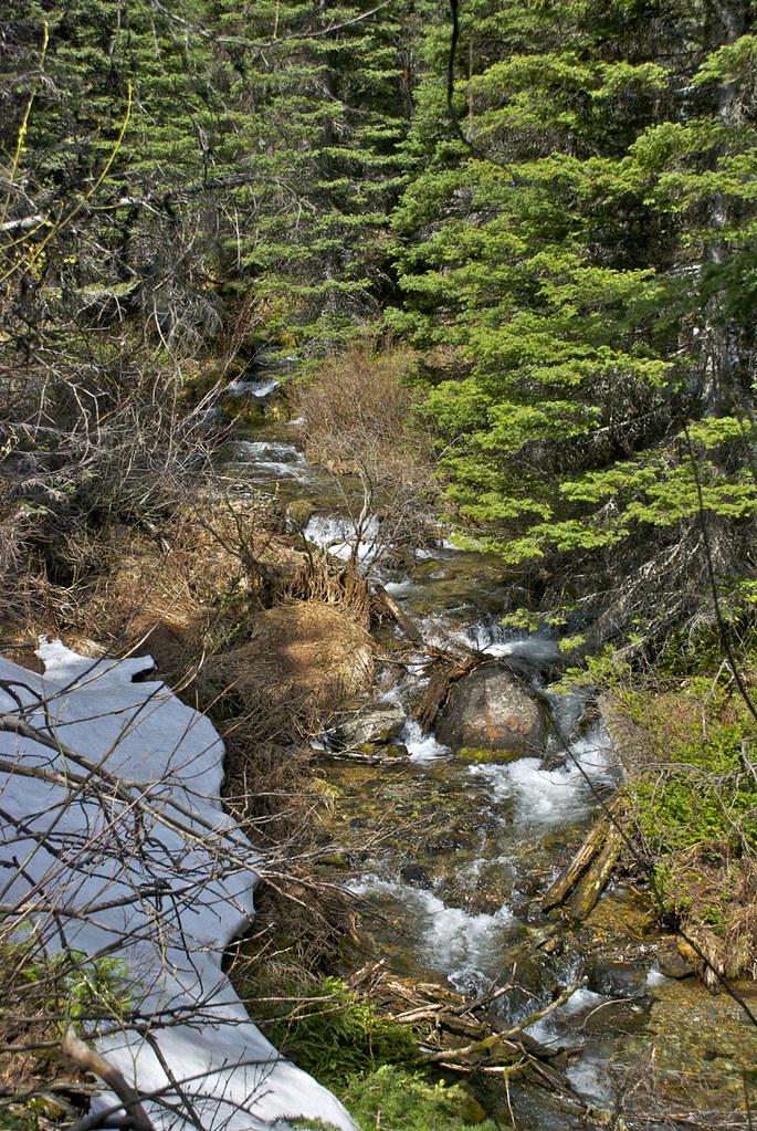 Four Lakes Creek