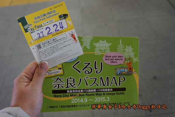 日本奈良公園東大寺06