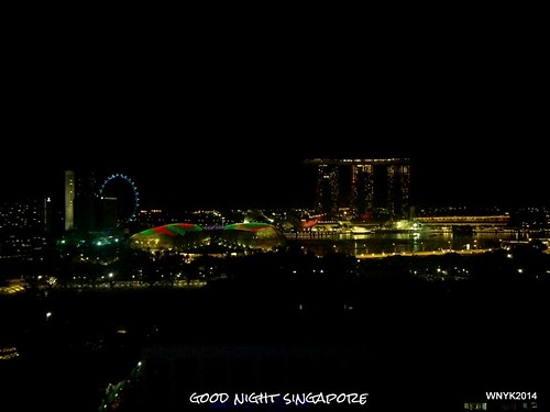 Good Night Singapore