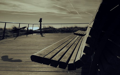 shadow blackandwhite panorama bird beach netherlands monochrome dutch sepia bench coast dunes northsea 365 iphone dunegrass egmondaanzee northholland project365 365days 365daysproject 278365 iphoneography