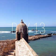 Day:13 #Essaouira. Bonding with the Atlantic Ocean. I supposed to stay for only a day in this place but I decided to spend my birthday watching the #ocean and the birds and the life around. A time with the universe. A time to connect with #life forces aro