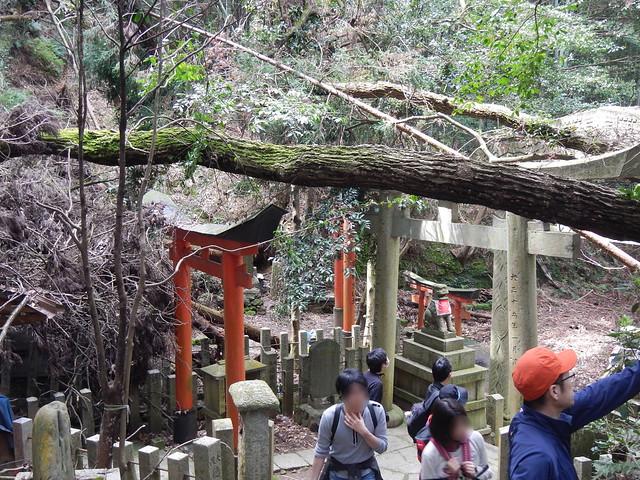 大岩神社参道