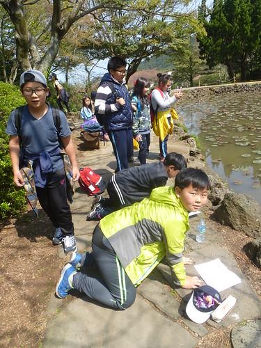 Co-Jejudo-Jeju 2-Halla Arboretum (7)