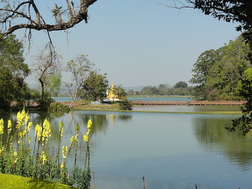 lake green nature grass gardens garden asian asia burma national myanmar oo burmese lwin pyin pyinoolwin