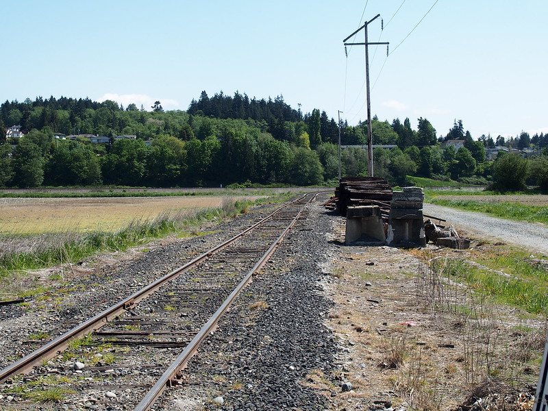 Abandoned Railroad: Just north of Stanwood