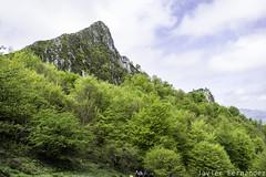 Pico Cogollu (1.225 m) (11-04-2015)