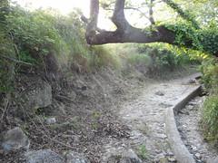 Σε εξέλιξη καθαρισμός της μικρής κοιλάδας της Ψίνθου