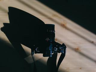 Olympus OM-D E-M5 Mark II + Leica DG Nocticron 42.5mm f1.2 ASPH
