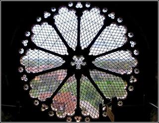 Beautiful Rose Window ..