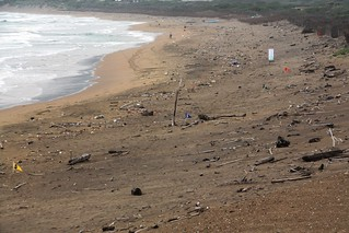 淨灘前。攝影:洪郁婷