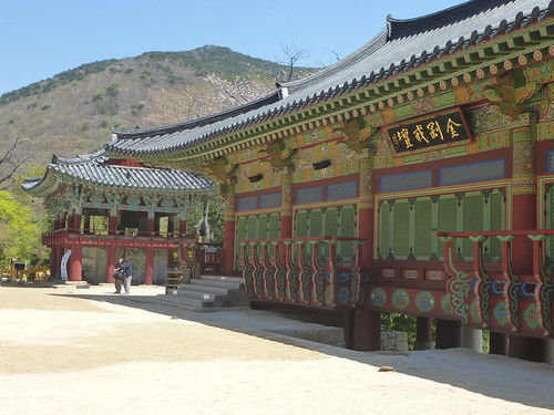 Co-Busan-Beomeosa Temple (37)