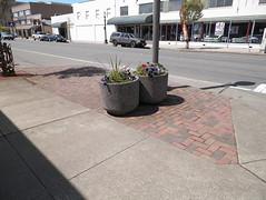 floor(0.0), outdoor structure(0.0), driveway(0.0), city(0.0), walkway(0.0), flooring(0.0), pedestrian crossing(0.0), zebra crossing(0.0), asphalt(1.0), sidewalk(1.0), road(1.0), lane(1.0), residential area(1.0), public space(1.0), road surface(1.0), street(1.0), pedestrian(1.0), tarmac(1.0),