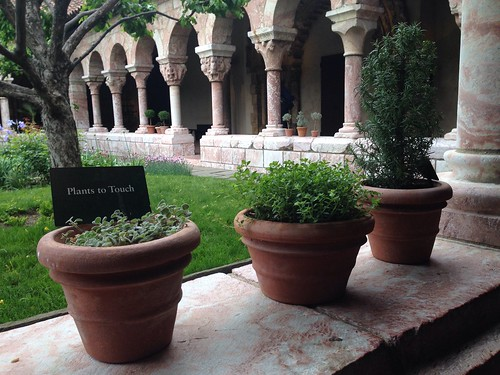The Cloisters: Plants to Touch | by The Literary Omnivore