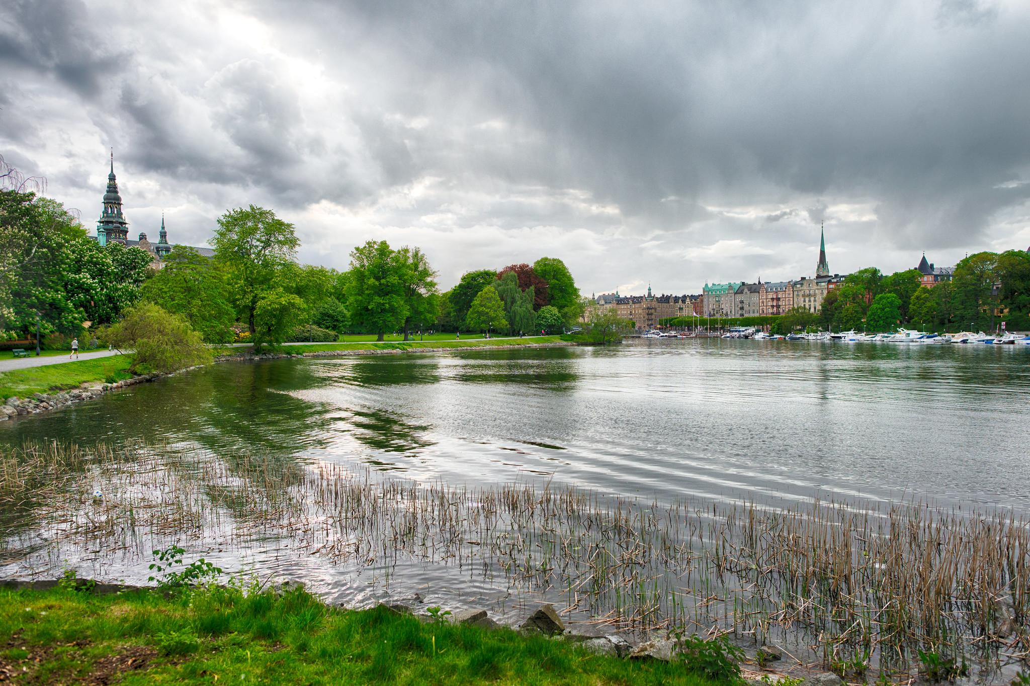 Djurgården Rain