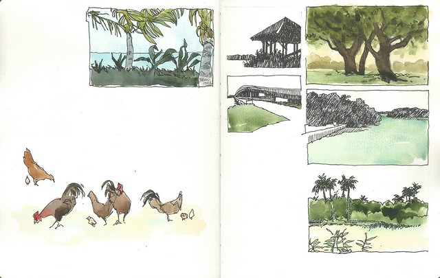 2016_04 Florida Sketches