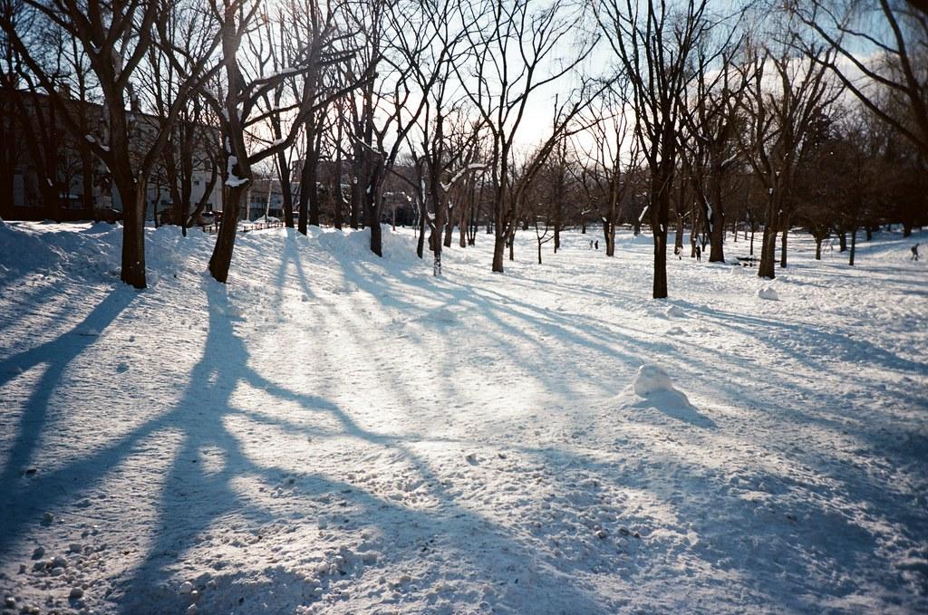 北海道大學 札幌 北海道 Sapporo, Japan / Kodak Pro Ektar / Lomo LC-A+ 出發前看到很多人都有這畫面,我也拍到了。  只是在積雪堆裡走路,是多麼的恐怖。  Lomo LC-A+ Kodak Pro Ektar 100 8267-0025 2016-01-31 ~ 2016-02-02 Photo by Toomore