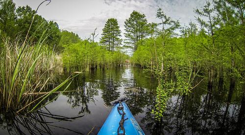 Lake Marion Plantation Islands-33