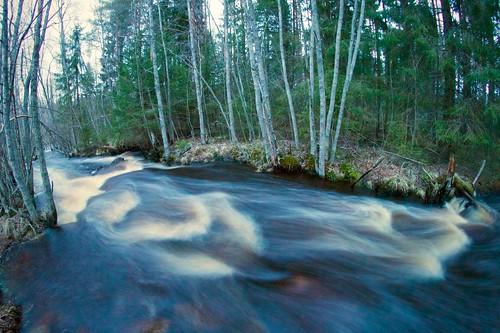 white nature water creek forest finland river evening spring stream fisheye april 8mm rapid dörr f35 raahe samyang pattijoki ylipää lasikangas
