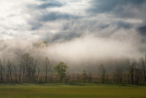 park morning fog rural sunrise season landscape spring tn cove tennessee foggy national valley springtime settlement greatsmokymountains cades gsmnp