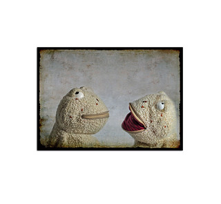 Two toads talking A48