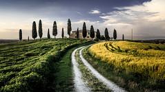 I Cipressini - Tuscany