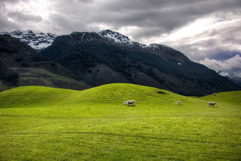 Hobbit Locations New Zealand