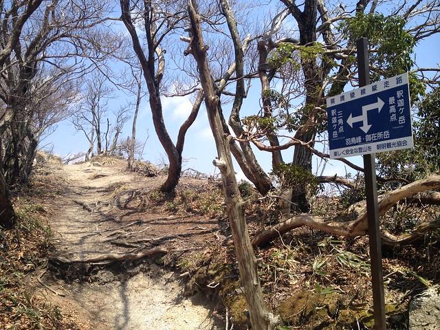 釈迦ヶ岳 県境稜線縦走路 三角点・最高点分岐