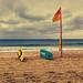 119/365 Life Saving #beach #flag #surfboards #sea #ocean #australia #coogee #lifesavers #empty #dramatic #sky #photoaday by Paul D Wade