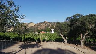 Carmel Wein
