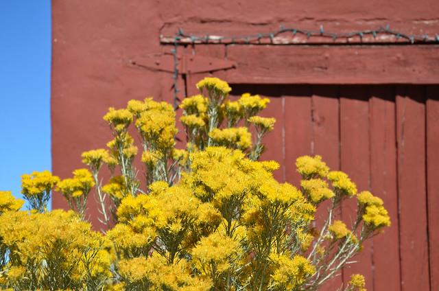 Madrid, New Mexico 2014